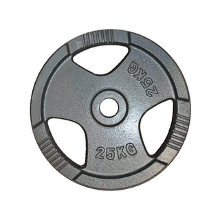 Gym Cast Iron Weight Plates